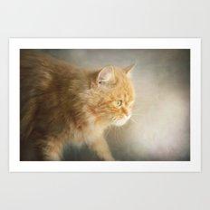 The Ginger Hunter.... Art Print