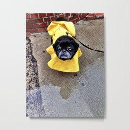 Rainy Day Pug - Newbury Street Metal Print