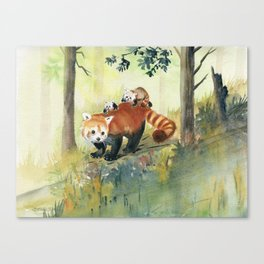 Red Panda Family Canvas Print
