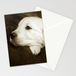 Cute labrador puppy Stationery Cards