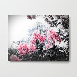 Pink Flowers Pop of Color Metal Print