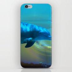 Happy Dolphin iPhone & iPod Skin