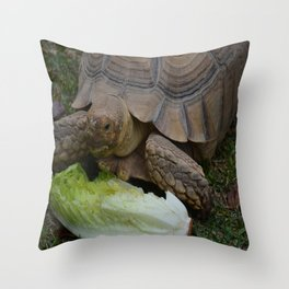Toast Throw Pillow