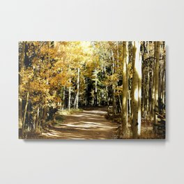 Kenosha Pass Fall Colors Metal Print