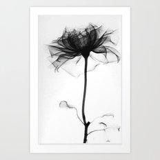 Pretty Xray Art Print