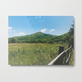 Roan, NC •Appalachian Trail Metal Print
