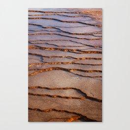 travertine Canvas Print