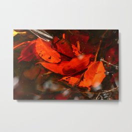 Red Coloured water Metal Print