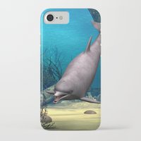 dolphin iPhone & iPod Cases featuring Dolphin by Design Windmill