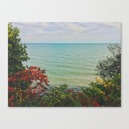 Finding Paradise Canvas Print