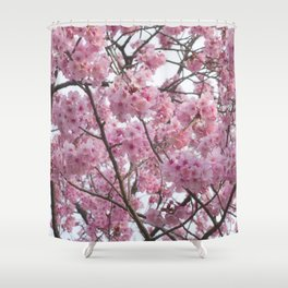 Cherry Blossom Trees. Pink flowers Shower Curtain