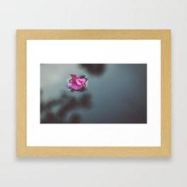 flower photography by J A N U P R A S A D Framed Art Print