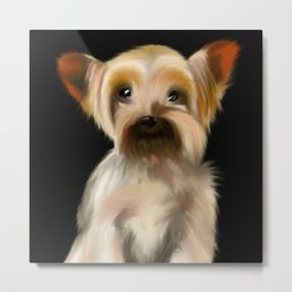 Cute Yorkie Pup on a Black Background Metal Print