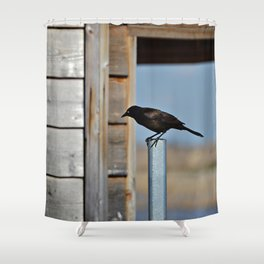 Just Stopped By Shower Curtain