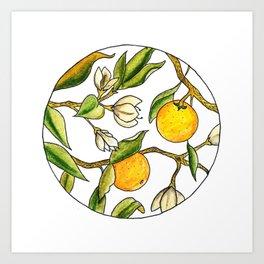 Orange Tree Circular Illustration Design Art Print