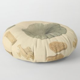 Coral Fossils Floor Pillow
