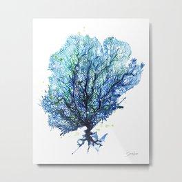 Fan Coral - Aqua Metal Print