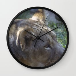 Philadelphia Zoo Series 9 Wall Clock