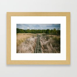 Ohio Swamp II Framed Art Print