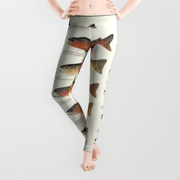 Illustrated Trout, Salmon and Char Fishing Identification Chart of North America Leggings