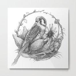 Kestrel by Amy B Chen Metal Print