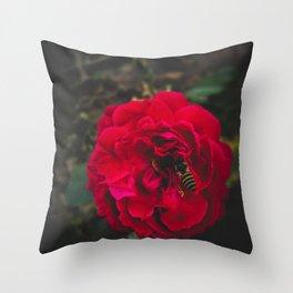 Flower Photography by rahul sharma Throw Pillow