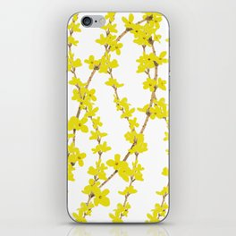 Forsythia - Harbinger of Spring iPhone Skin