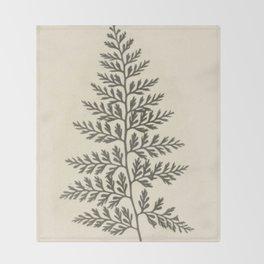 Naturalist Fern Throw Blanket
