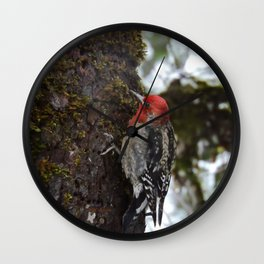 Red-Breasted Sapsucker in Christmas Snow Wall Clock
