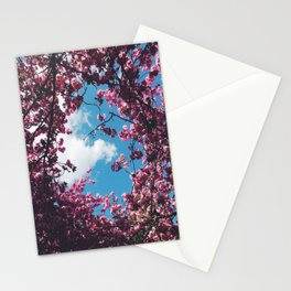 SPRING 5 Stationery Cards