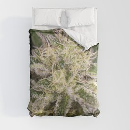 Girl scout cookie bud Comforters