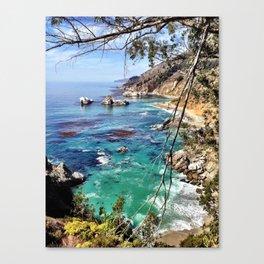 Big Sur Beauty Canvas Print