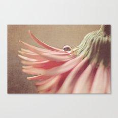 Pixie Hat Canvas Print