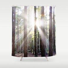 Sunburst Through the Redwoods Shower Curtain