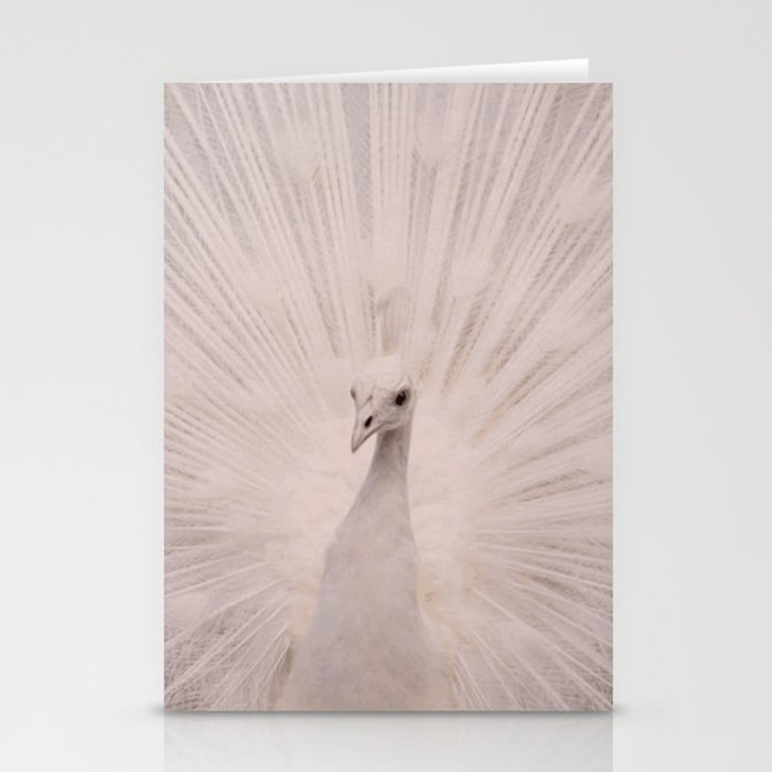 I'm a peacock, you got to let me fly! Stationery Cards