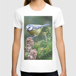 Blue Tit (Cyanistes caeruleus) T-shirt