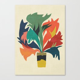 Potted staghorn fern plant Canvas Print