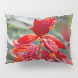 Fiercely Red Pillow Sham