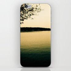 Day 285 iPhone & iPod Skin