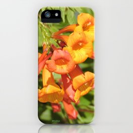 Natural Brass Blowing in the Breeze iPhone Case