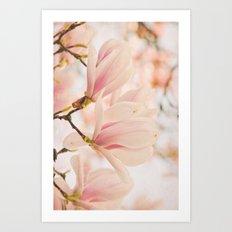 Magnolias I Art Print
