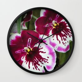 Ogling Orchids Wall Clock