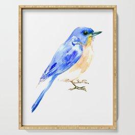 Eastern Bluebird Serving Tray