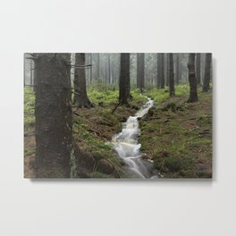 Mountains, forest, rain - water Metal Print