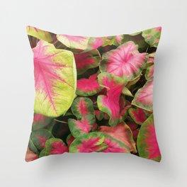 Colorful Caladium Throw Pillow