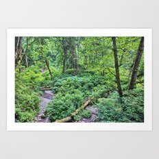 Winding Down the Hills Art Print