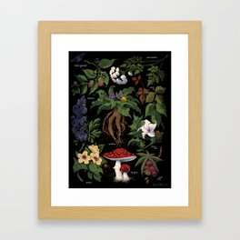 Poison Plants Framed Art Print