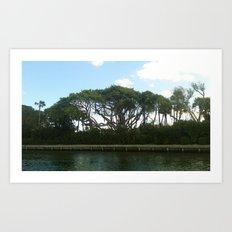 riverside jungle Art Print