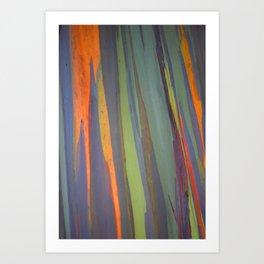 Rainbow Eucalyptus Magic Art Print