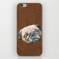 pug iPhone & iPod Skins featuring pug by Ancello